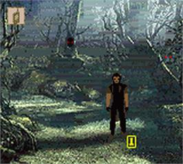 In game image of Alone in the Dark: The New Nightmare on the Nintendo Game Boy Color.