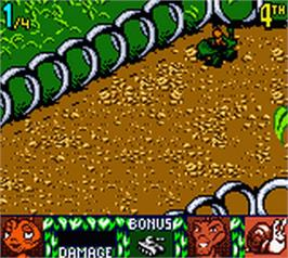 In game image of Antz Racing on the Nintendo Game Boy Color.