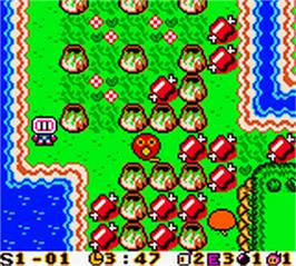 In game image of Bomberman Max: Blue Champion Edition on the Nintendo Game Boy Color.