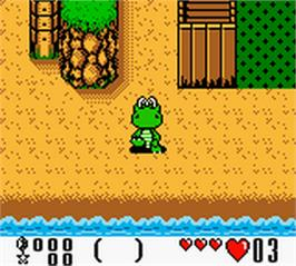 In game image of Croc 2 on the Nintendo Game Boy Color.