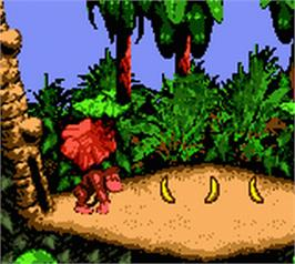 In game image of Donkey Kong Country on the Nintendo Game Boy Color.