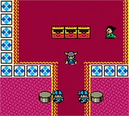 In game image of Dragon Warrior 1 & 2 on the Nintendo Game Boy Color.