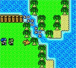In game image of Dragon Warrior Monsters 2: Tara's Adventure on the Nintendo Game Boy Color.