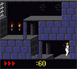 In game image of Prince of Persia on the Nintendo Game Boy Color.