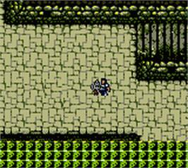 In game image of Warriors of Might and Magic on the Nintendo Game Boy Color.
