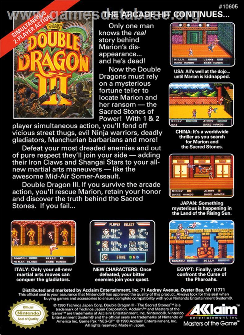 Double Dragon 3 The Rosetta Stone Nintendo Nes Artwork Box
