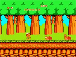 In game image of Adventure Island on the Nintendo NES.