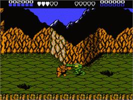 In game image of Battle Toads on the Nintendo NES.