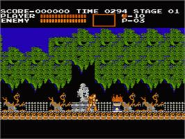 In game image of Castlevania on the Nintendo NES.