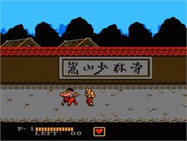 In game image of Challenge of the Dragon on the Nintendo NES.