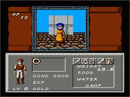 In game image of Dungeon Magic: Sword of the Elements on the Nintendo NES.