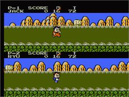 In game image of Little Ninja Brothers on the Nintendo NES.
