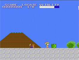 In game image of Mystery Quest on the Nintendo NES.