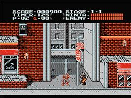 In game image of Ninja Gaiden on the Nintendo NES.