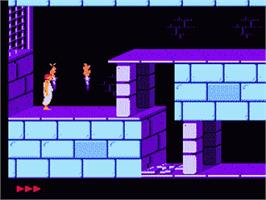 In game image of Prince of Persia on the Nintendo NES.