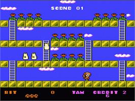 In game image of Rodland on the Nintendo NES.