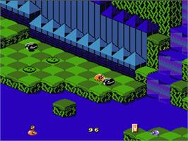 In game image of Snake Rattle 'n Roll on the Nintendo NES.