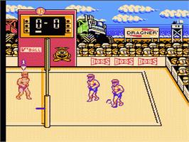 In game image of Super Spike V'Ball on the Nintendo NES.