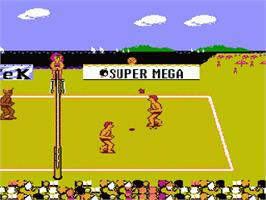 In game image of Venice Beach Volleyball on the Nintendo NES.