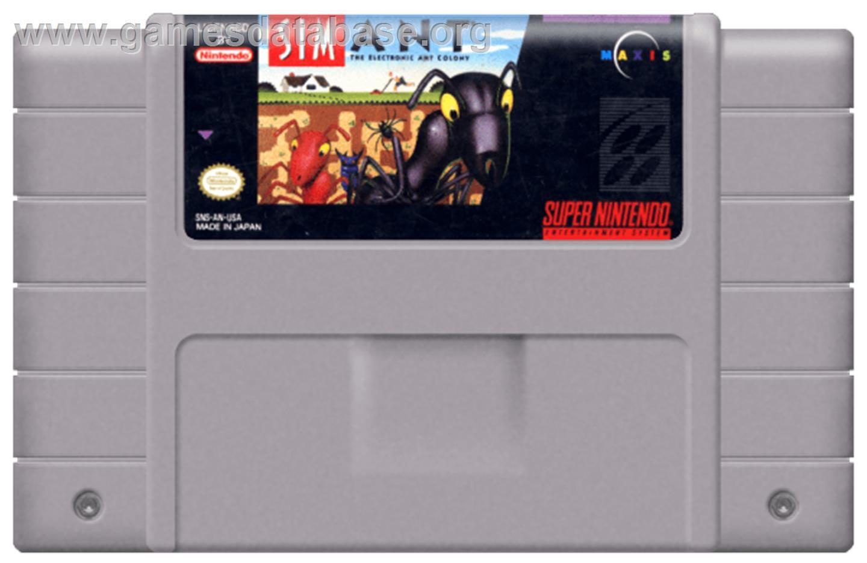 Sim Ant: The Electronic Ant Colony - Nintendo SNES - Artwork