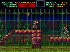 In game image of Super Castlevania IV on the Nintendo SNES.