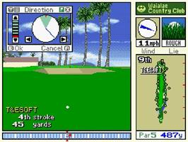 In game image of True Golf Classics: Waialae Country Club on the Nintendo SNES.
