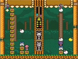 In game image of Wario's Woods on the Nintendo SNES.