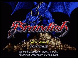 Title screen of Brandish on the Nintendo SNES.