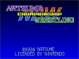 Title screen of Natsume Championship Wrestling on the Nintendo SNES.