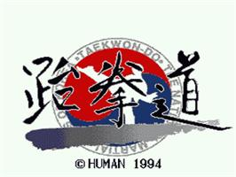 Title screen of Taekwondo on the Nintendo SNES.