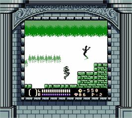 In game image of Castlevania - Legends on the Nintendo Super Gameboy.