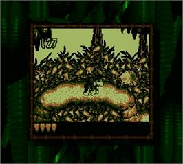 In game image of Donkey Kong Land on the Nintendo Super Gameboy.