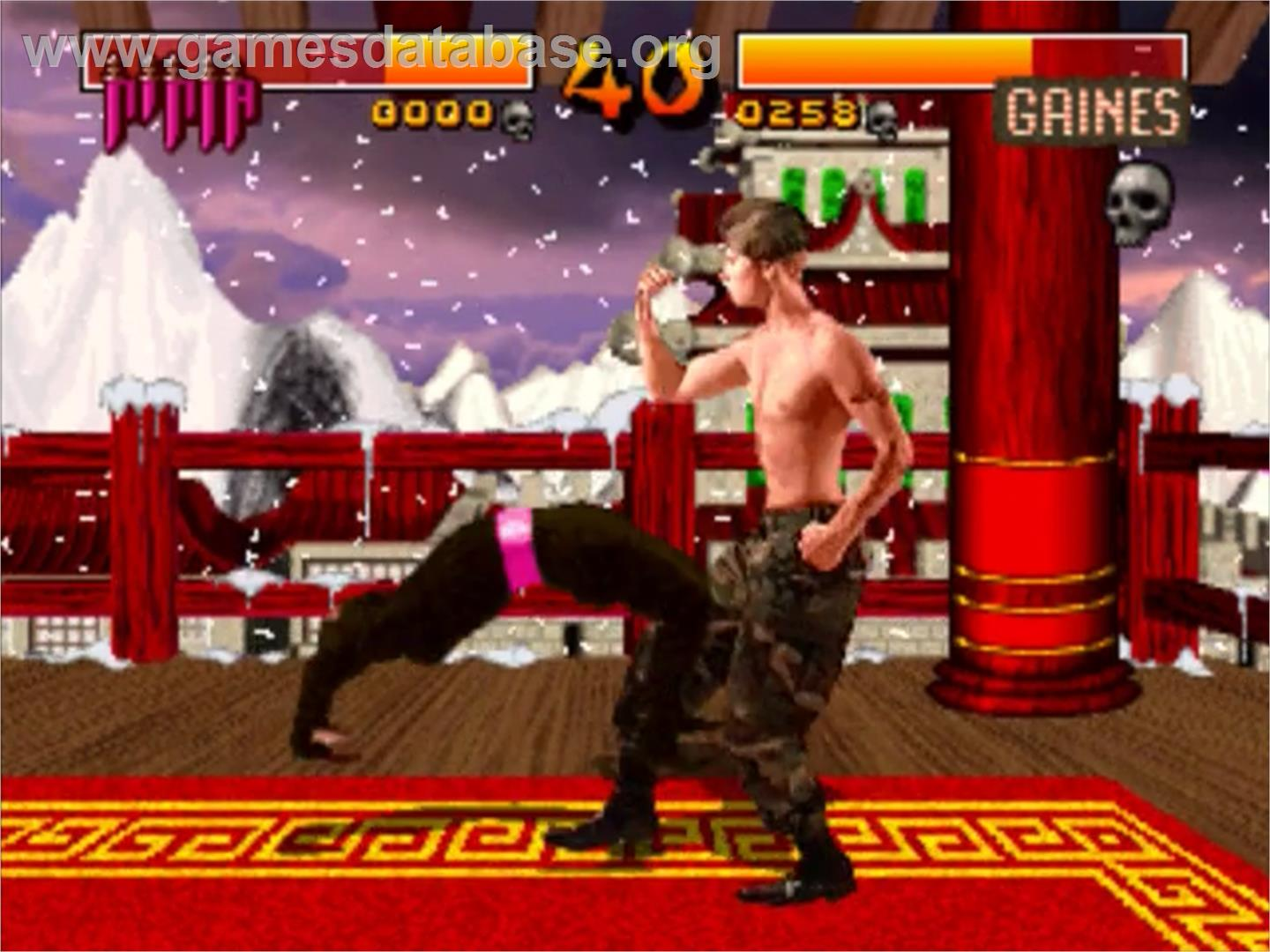 In game image of Way of the Warrior on the Panasonic 3DO.