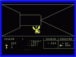 In game image of Labyrinthe Et La Princesse, Le on the Philips VG 5000.