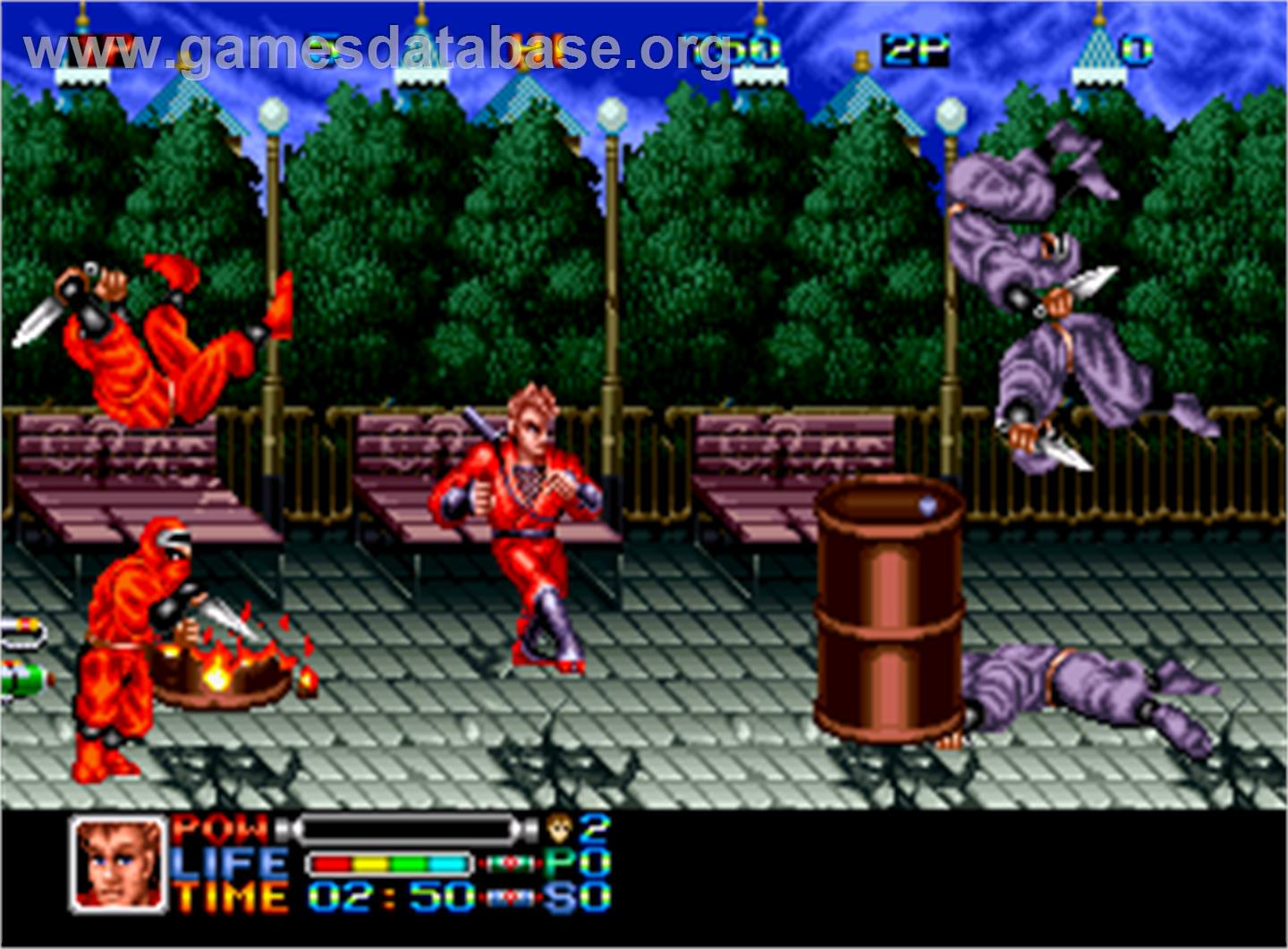 Ninja Combat - SNK Neo-Geo AES - Artwork - In Game
