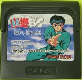Cartridge artwork for Yu Yu Hakusho II: Gekitou! Nanakyou no Tatakai on the Sega Game Gear.