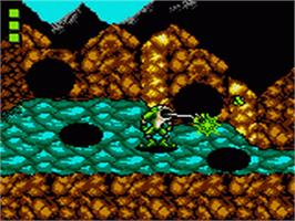 In game image of Battle Toads on the Sega Game Gear.