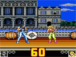 In game image of Fatal Fury Special / Garou Densetsu Special on the Sega Game Gear.