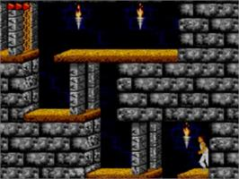 In game image of Prince of Persia on the Sega Game Gear.