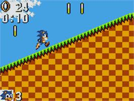 In game image of Sonic The Hedgehog on the Sega Game Gear.