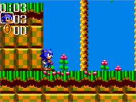 In game image of Sonic the Hedgehog Chaos on the Sega Game Gear.
