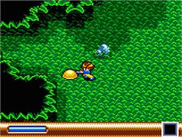 In game image of Sylvan Tale on the Sega Game Gear.