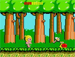 In game image of Wonder Boy on the Sega Game Gear.