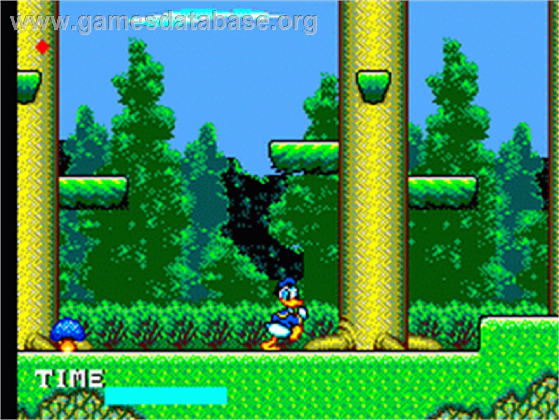 big duck games