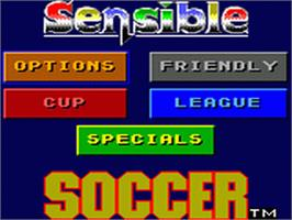 Title screen of Sensible Soccer: European Champions: 92/93 Edition on the Sega Game Gear.