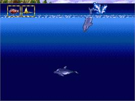In game image of Ecco Jr. on the Sega Genesis.
