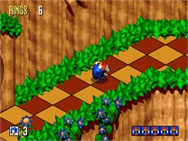 In game image of Sonic 3D Blast on the Sega Genesis.