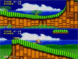 In game image of Sonic Classics on the Sega Genesis.