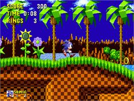 In game image of Sonic The Hedgehog on the Sega Genesis.