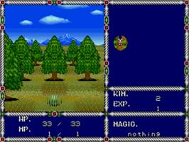 In game image of Sword of Vermilion on the Sega Genesis.